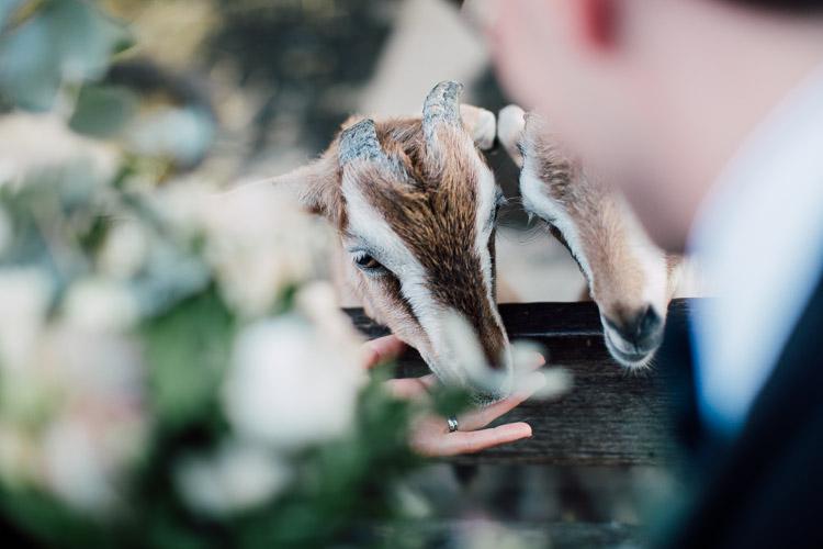 The_Grounds_Alexandria_Wedding_photographer_045.jpg