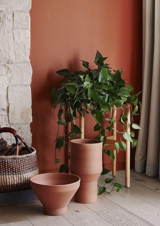 house plant 13.jpg
