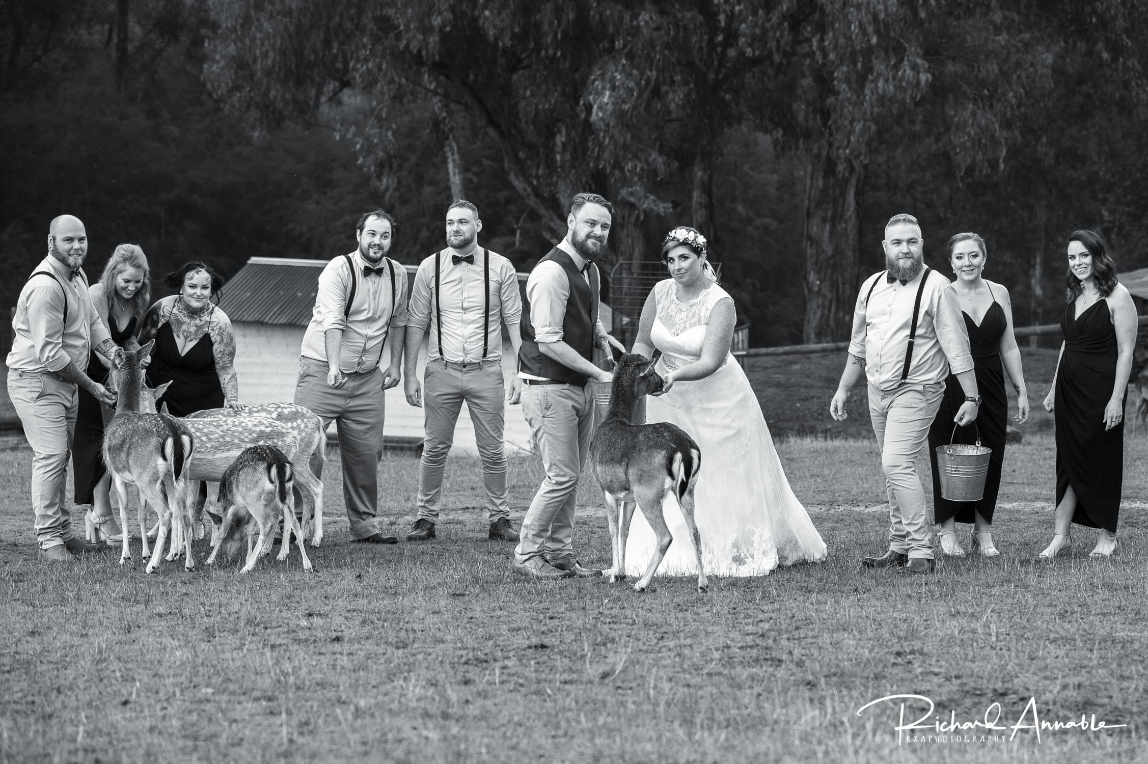 Sacha & Ben - Click here to view my favourite photographs from Sacha & Ben's Gum Gully Farm wedding.