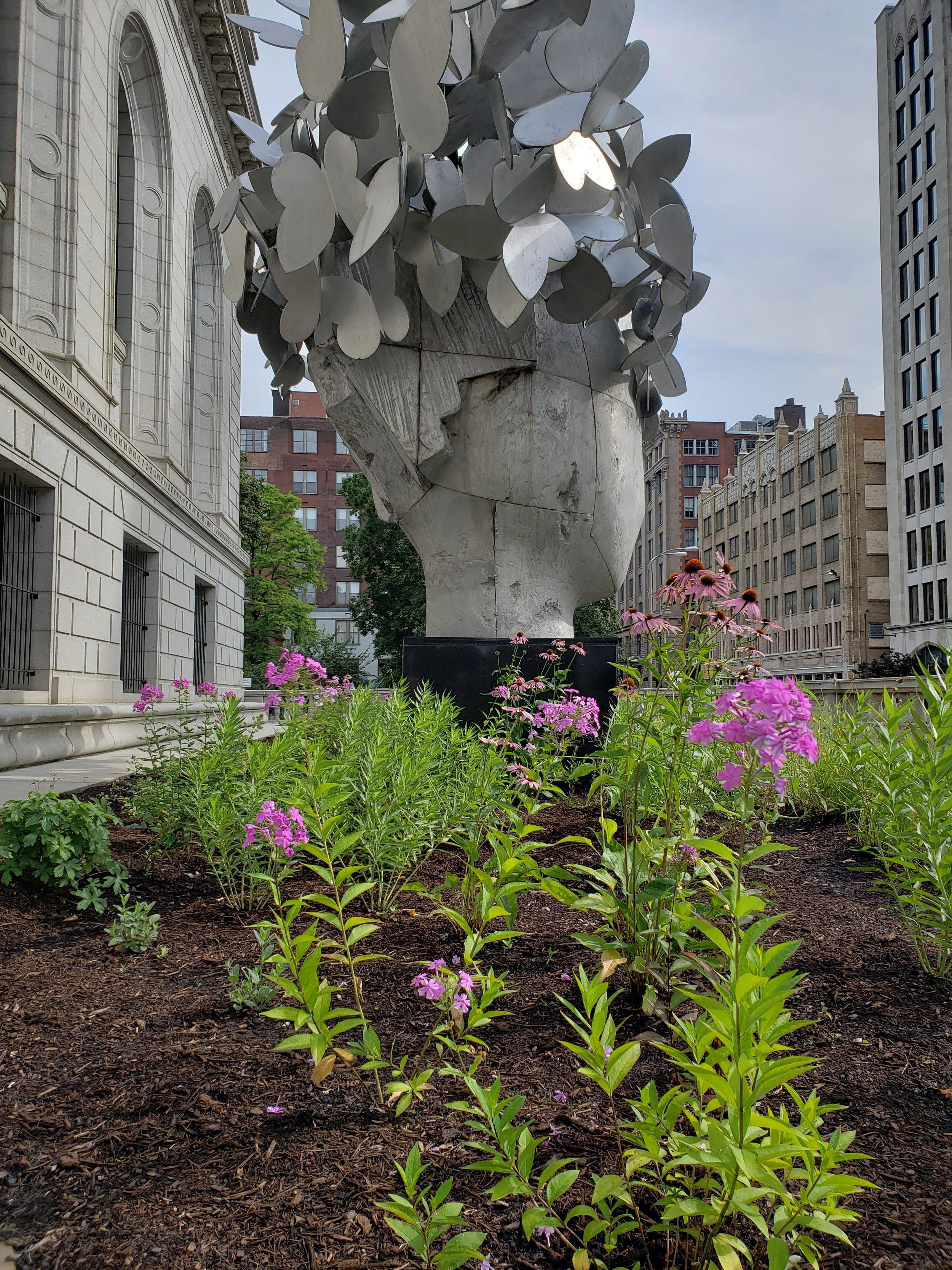 Central Library pollinator garden -