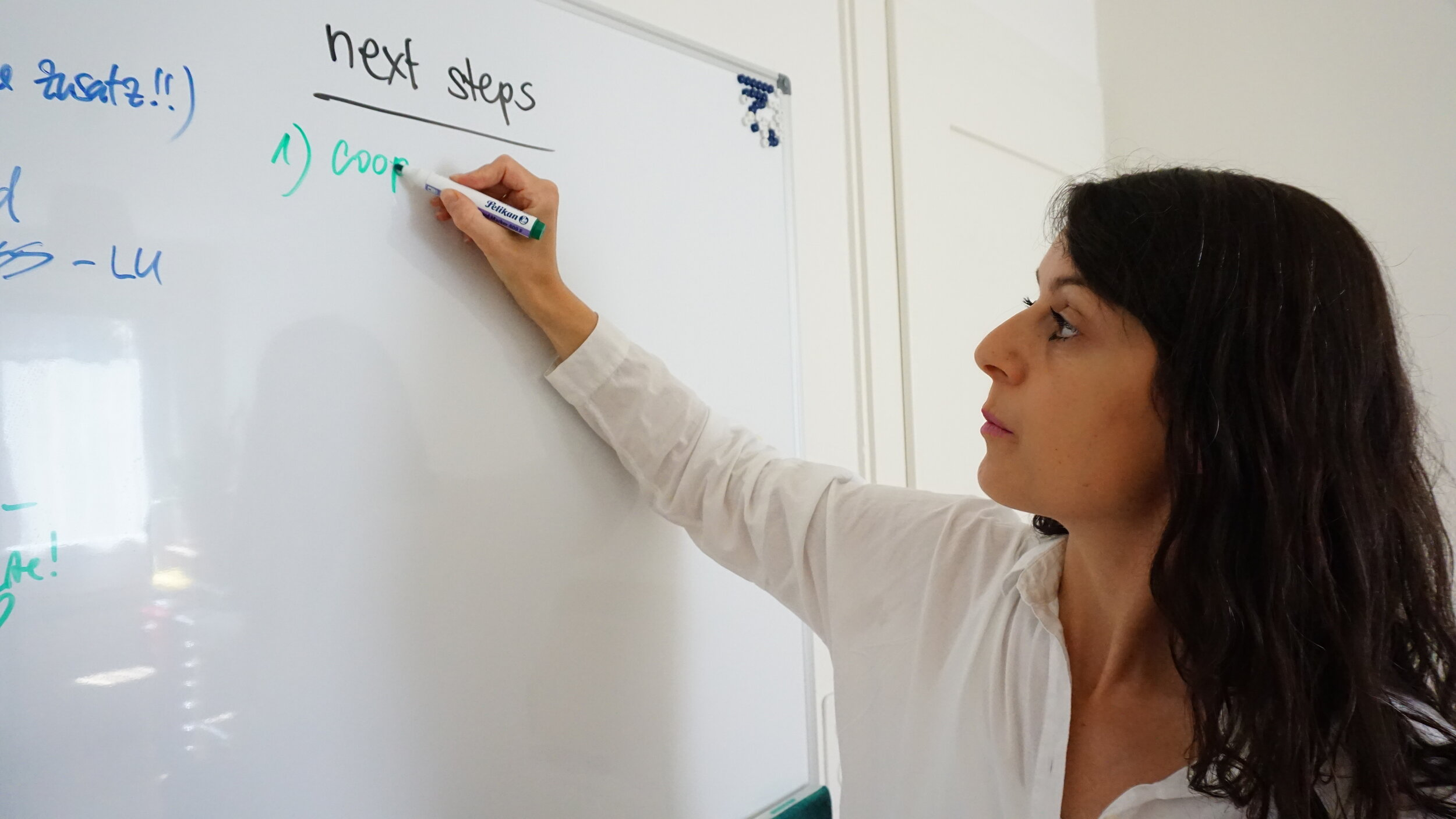 business mentoring in zuerich ch
