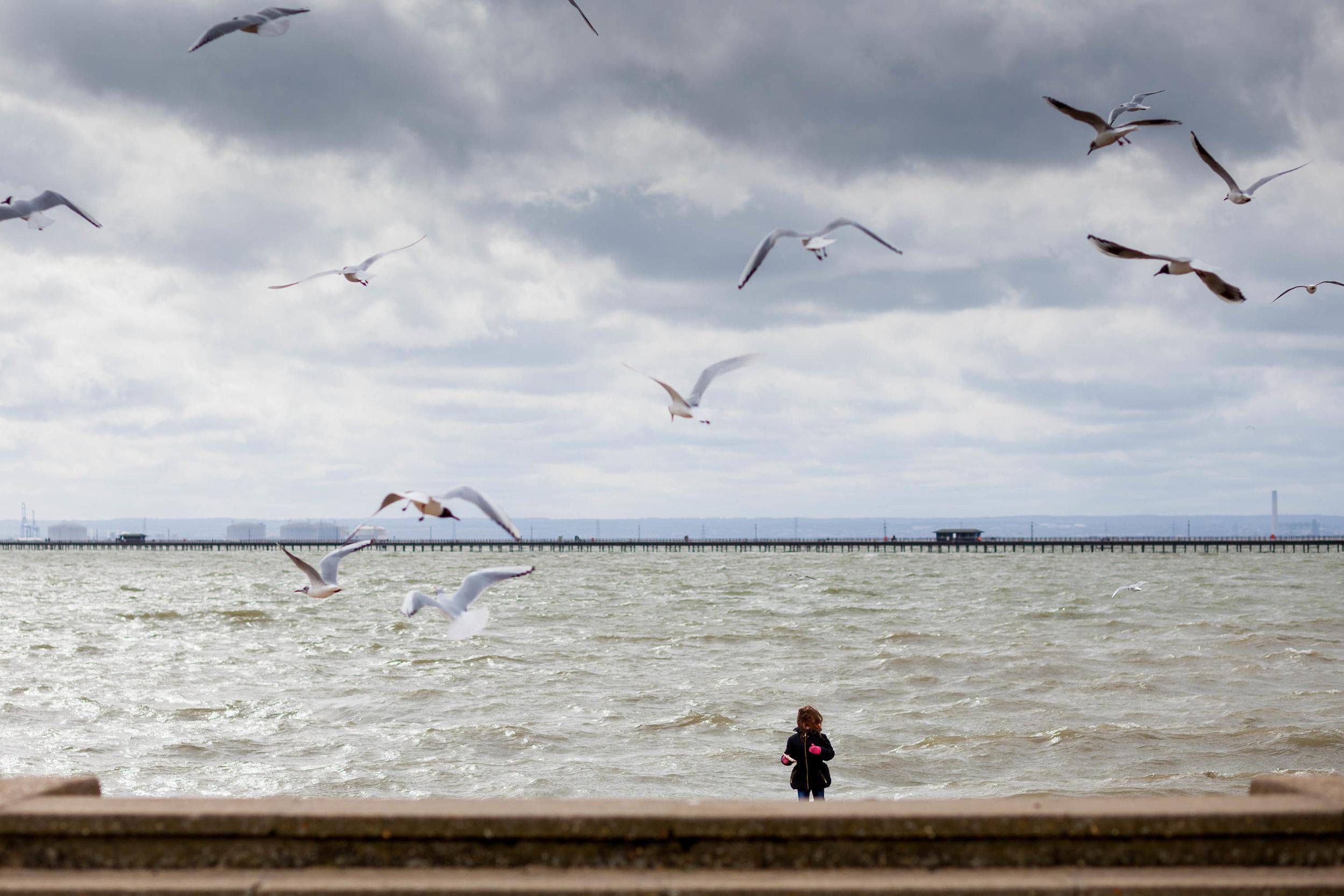 Girl feeding seaguls, Southend on Sea_3000px-60.jpg