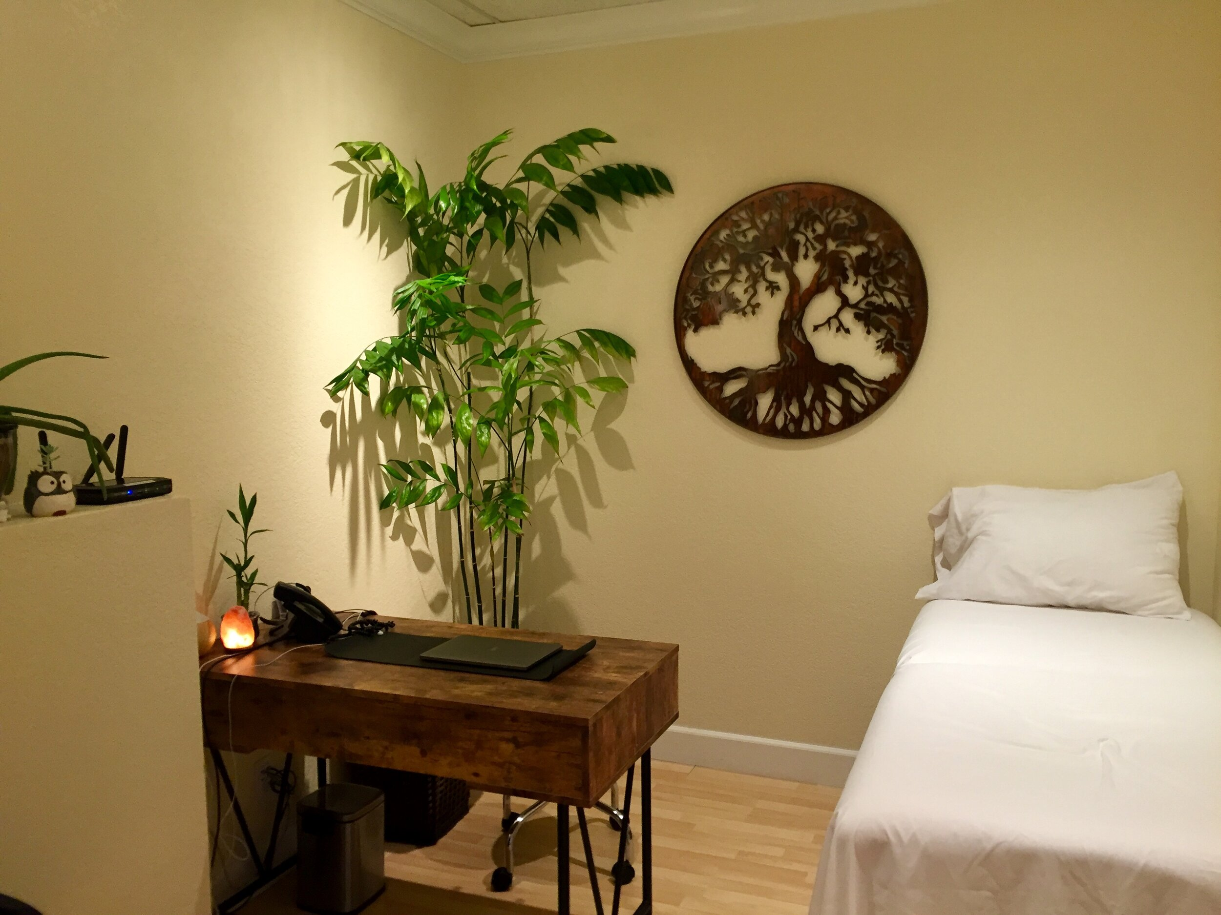 Our Practice - Wild Oak Medicine is located within the Airport Health Club in Santa Rosa, California.