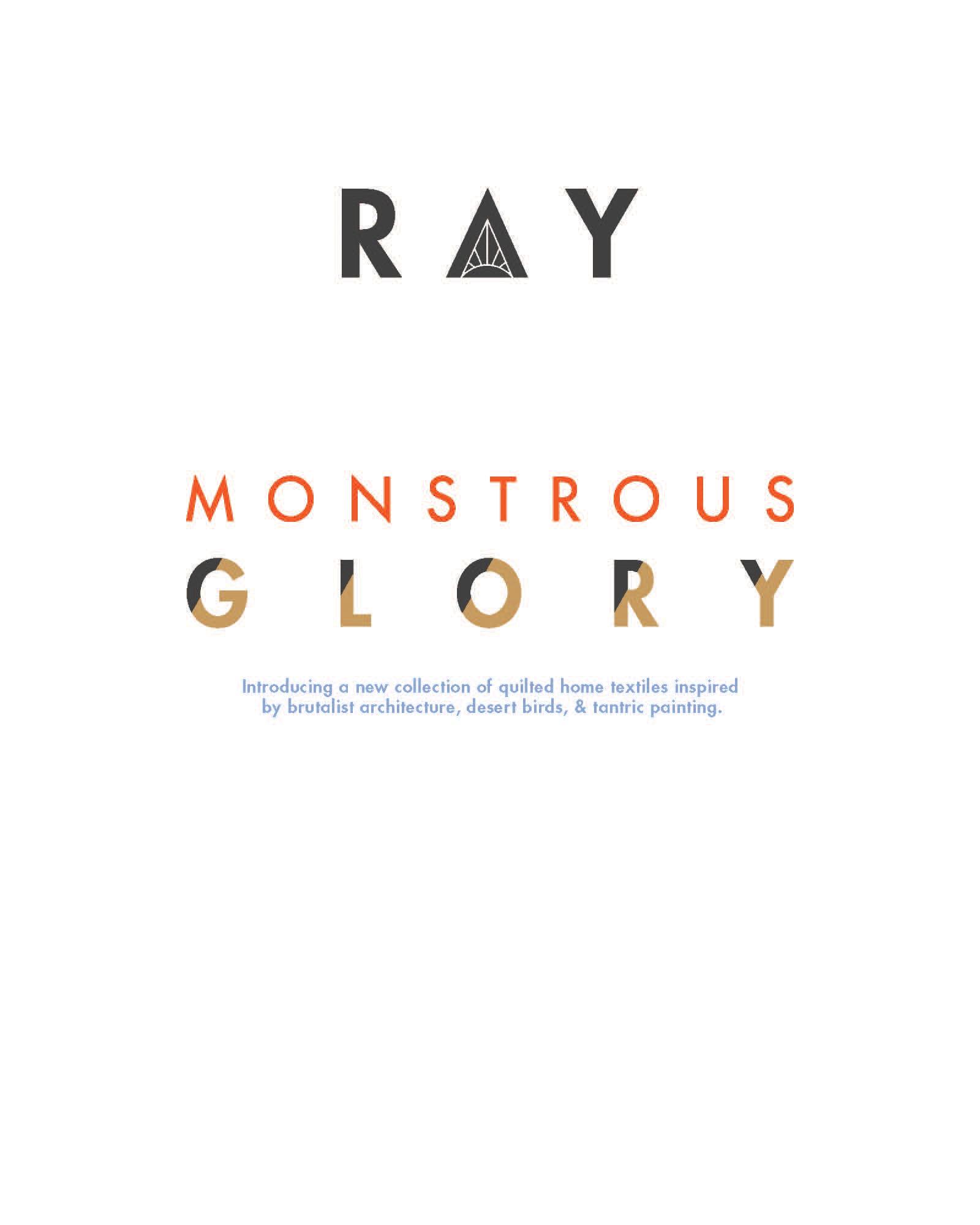 Ray-lookbook_Page_02.jpg