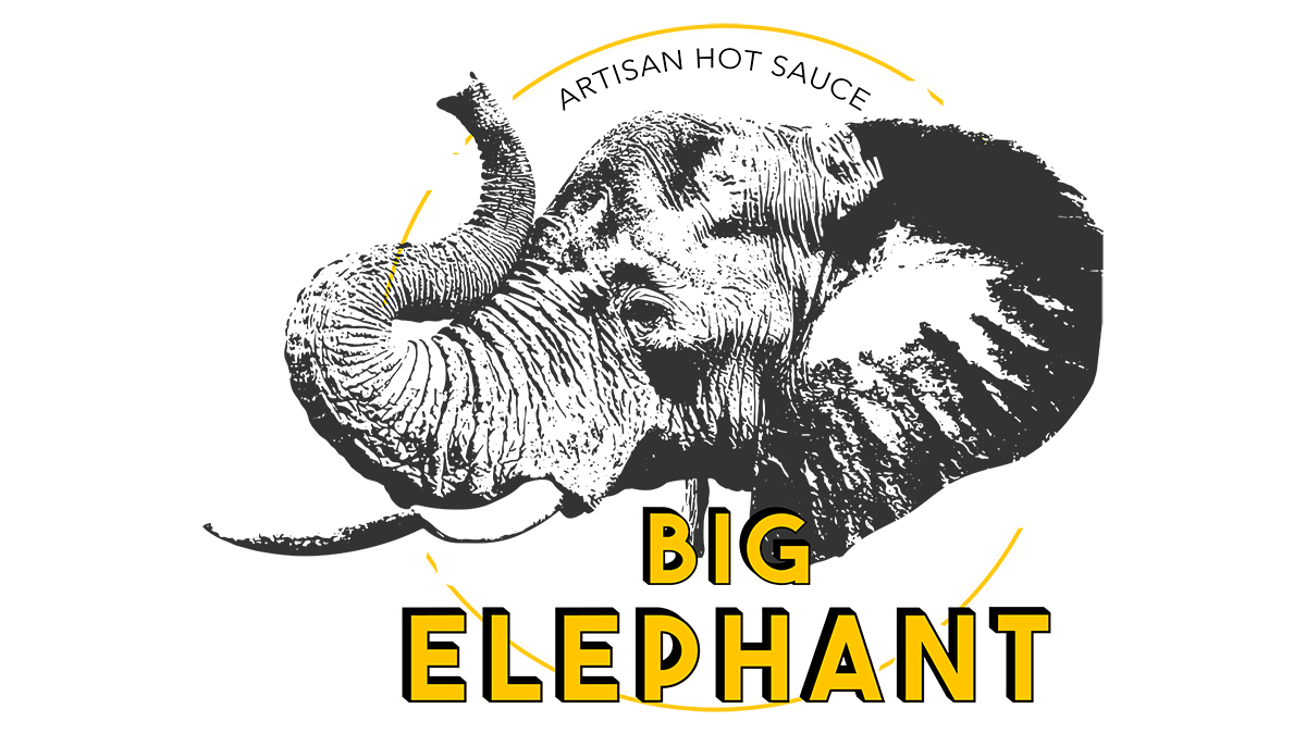 Big Elephant Logo Design