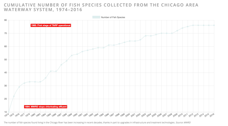 Species in River.png