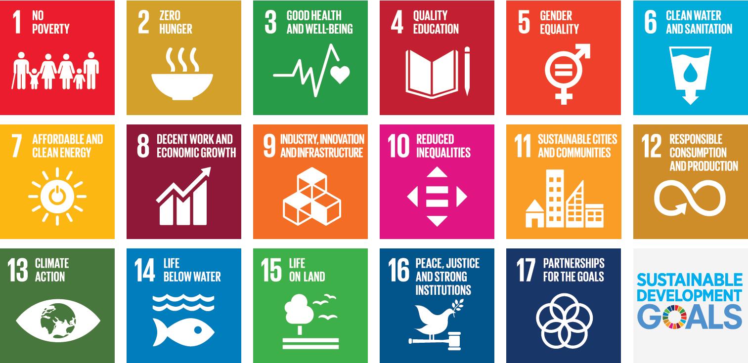 Brightlight - Website Assets - SDGs.png