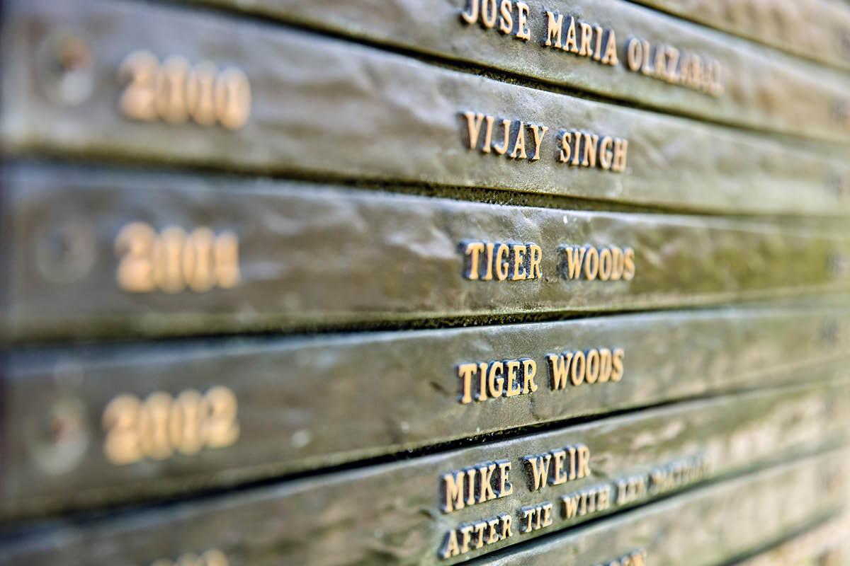 GT Norway - Insight - Tiger.jpg