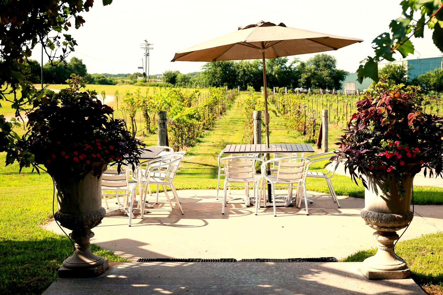 Vineyard & Gazebo - Our vineyard and gazebo can serve as the perfect outdoor venue for your event. If you're looking for a romantic venue with rural charm, the vineyard is perfect for you.