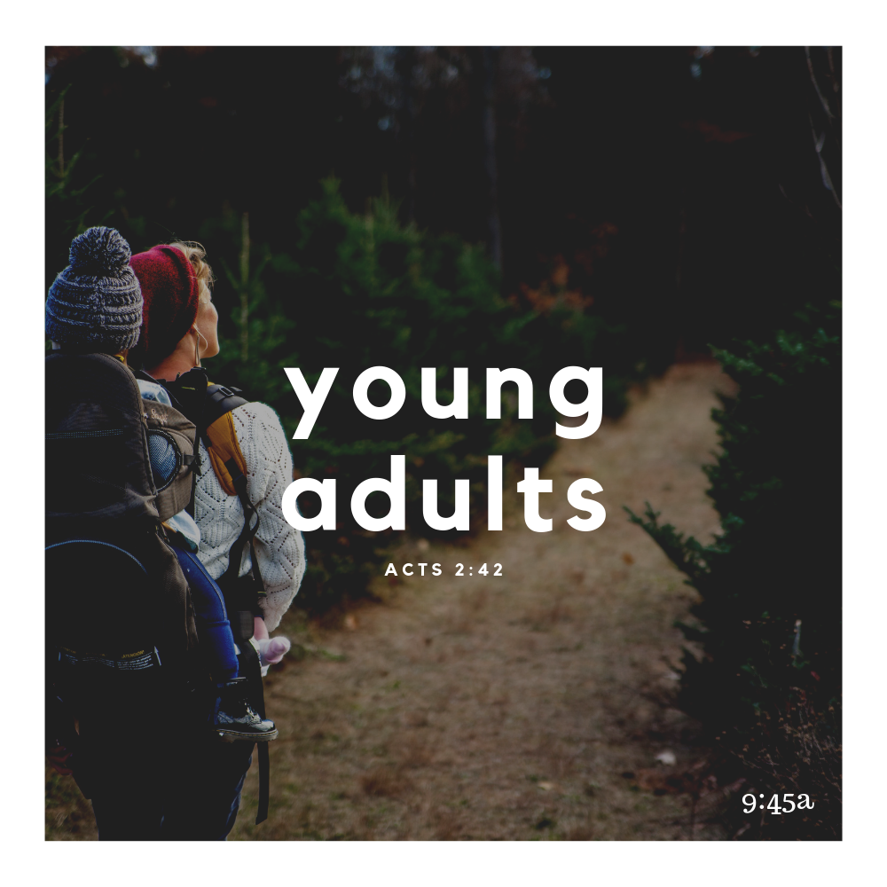 Young Adults (1).png