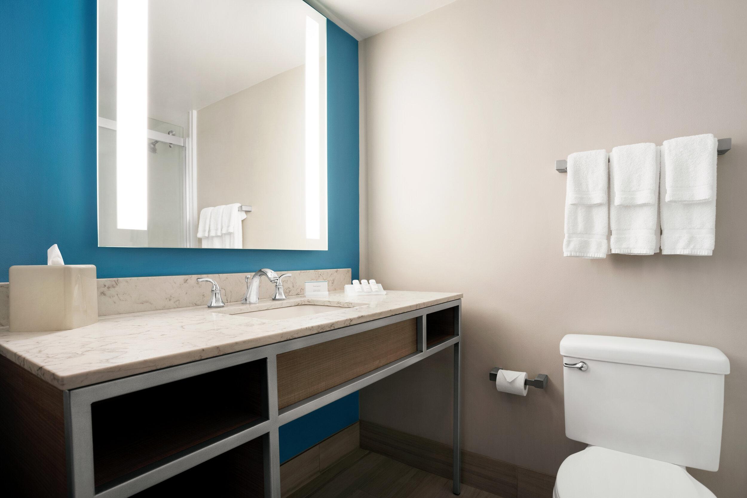 MSYGI_Guest_Bathroom_01.jpg