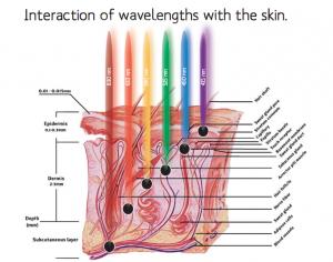 skin & LED light