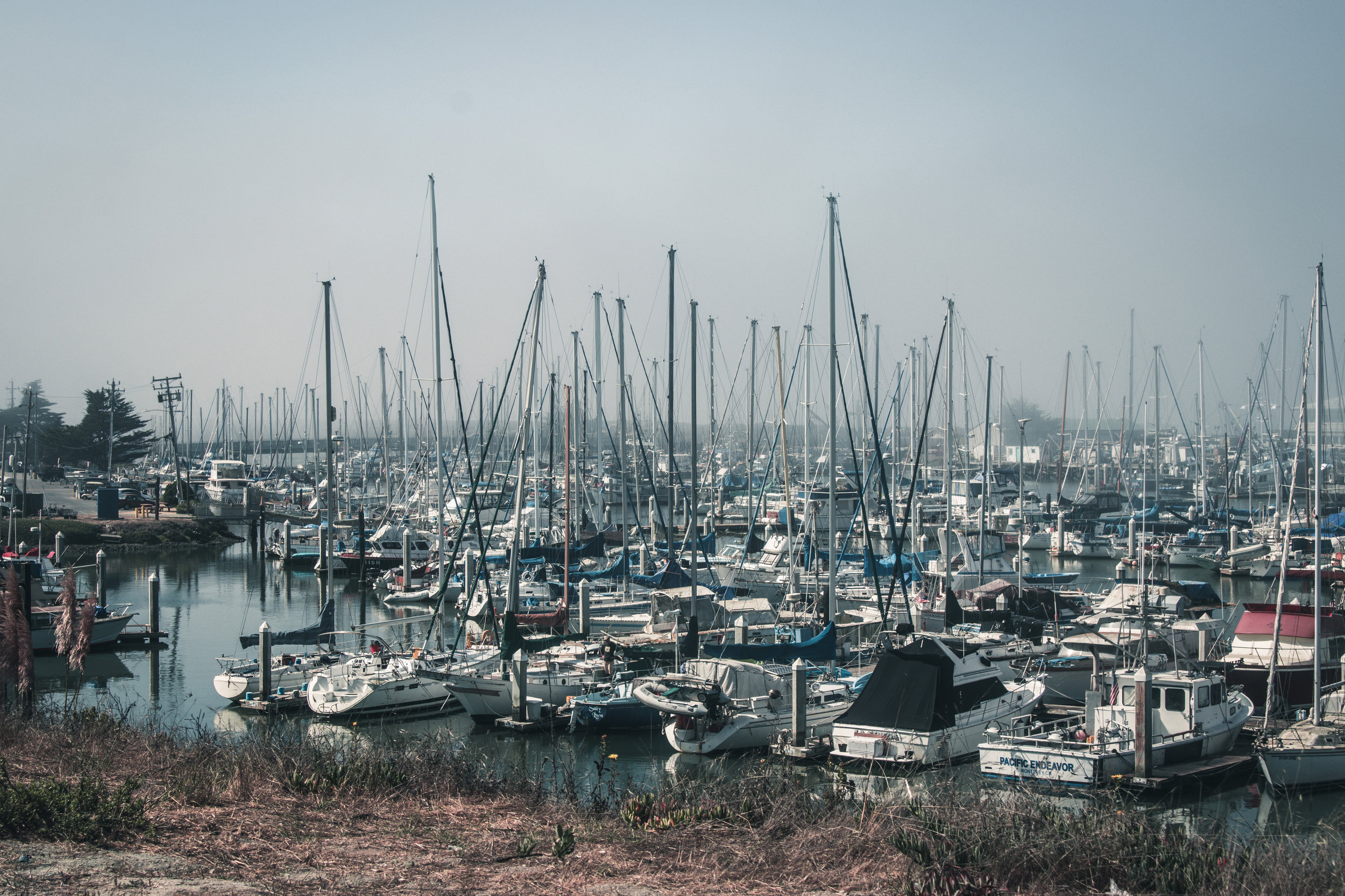 Boats Docked on the Pacific