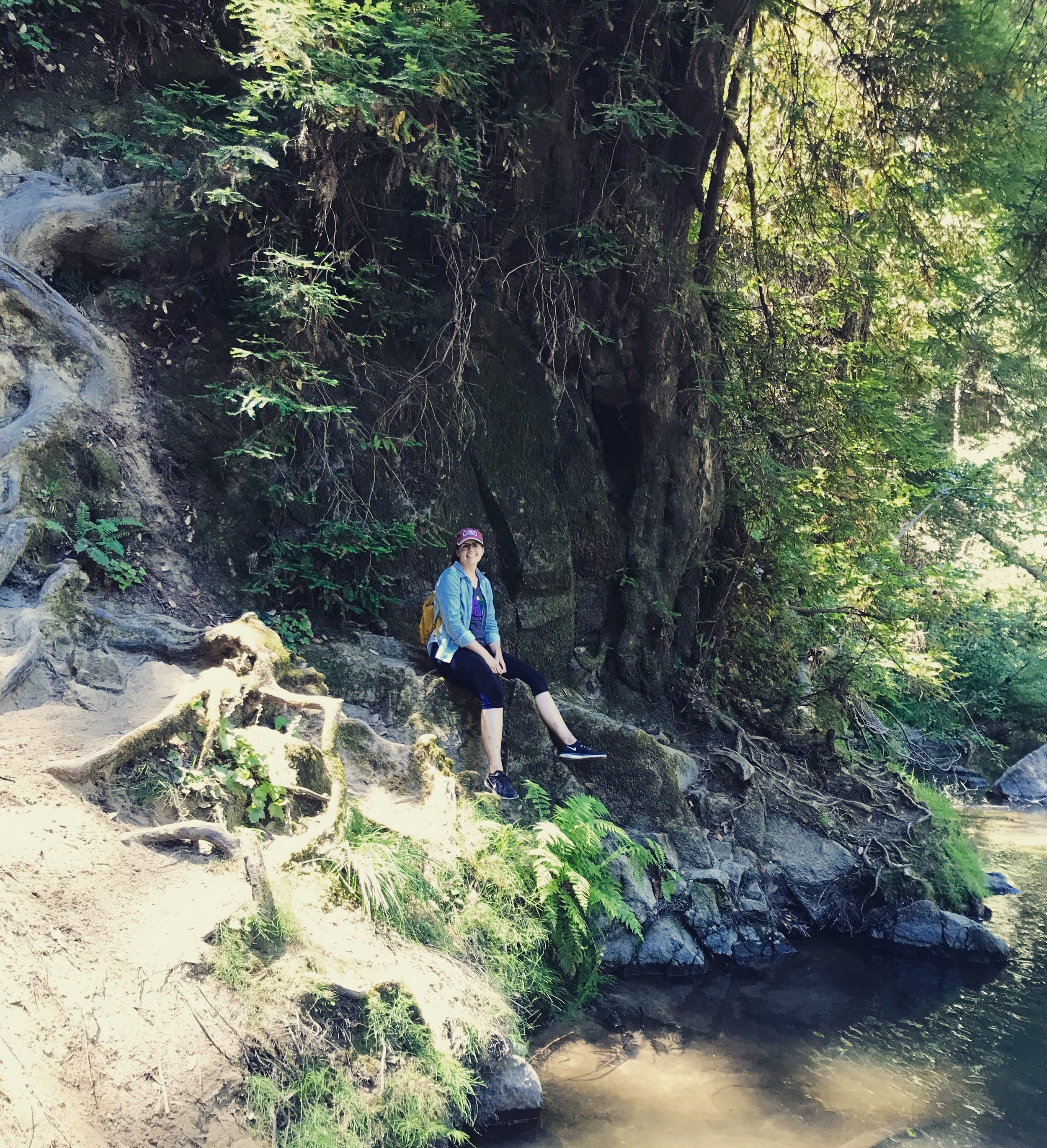 Laura at Henry Cowell State Park CA.jpg