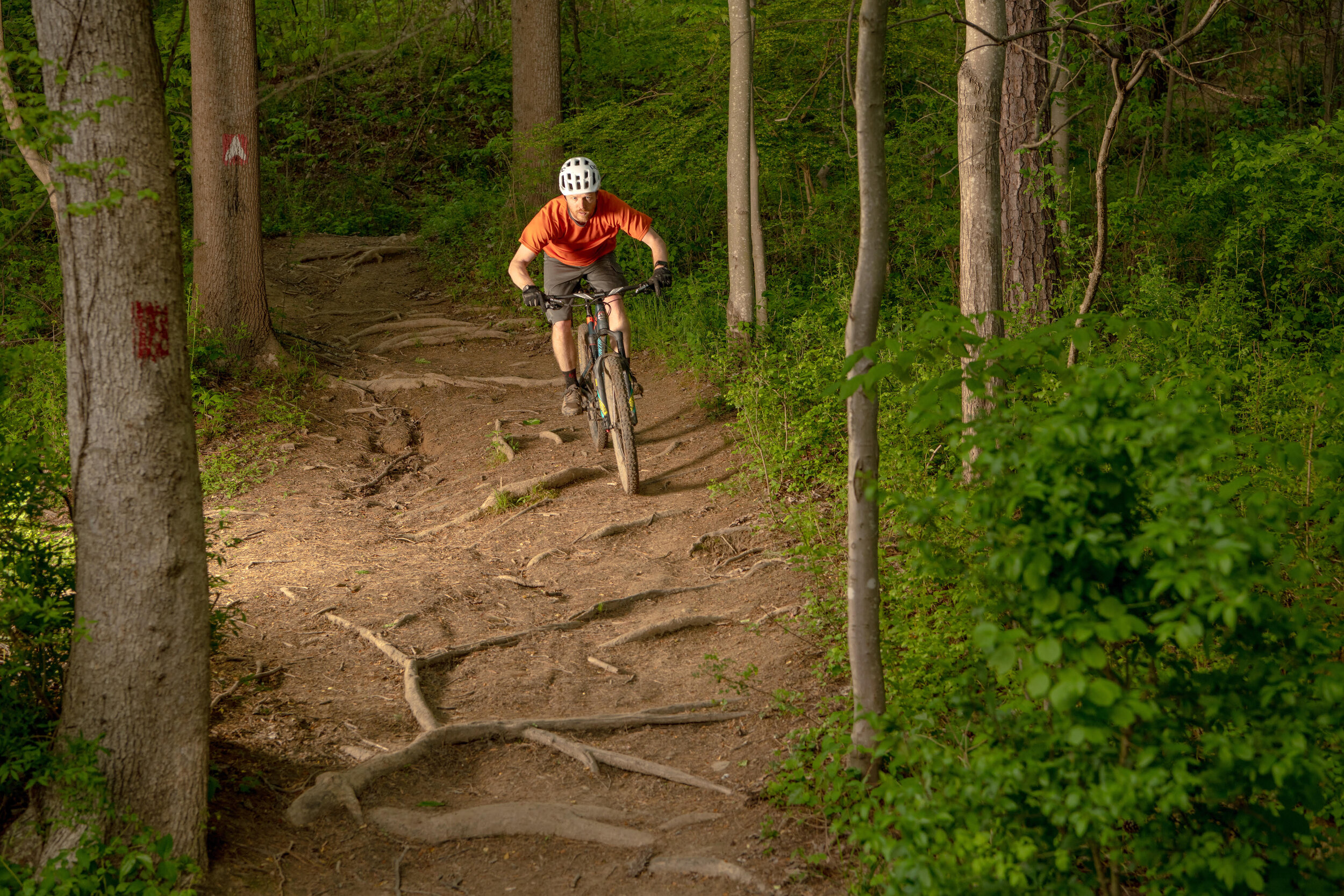 Wayne National Forest is employing the Environmental Impact Bond model to finance a new mountain bike trail.