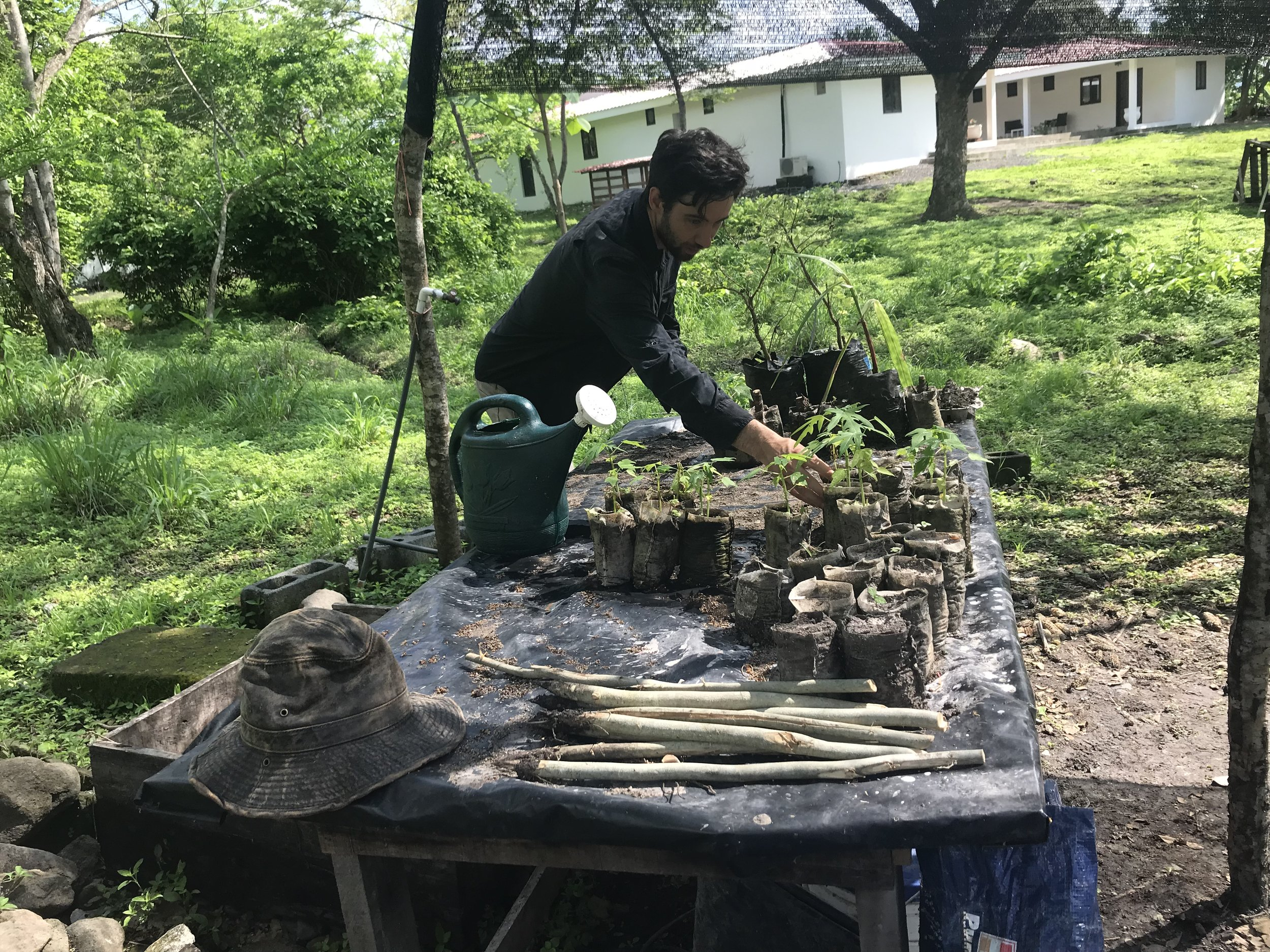Project co-founder Tom working in the farm's nursery