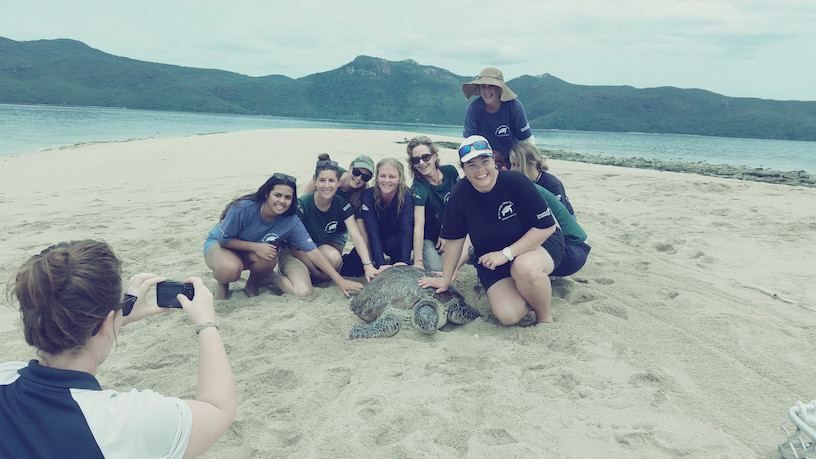 Releasing Kankama, a Green Turtle we nursed for float being released after 6 months in our care. Jan 2015, Langford Reef, near Hayman Island.