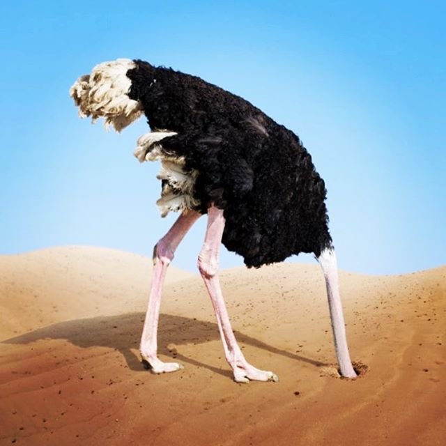 Head in the sand about retirement? Our research with Australian Unity showed 75% of 45-64yo Australians neglecting to get advice and 85% uncomfortable with their current financial position.  http://www.moneymanagement.com.au/news/financial-planning/australians-unprepared-retirement