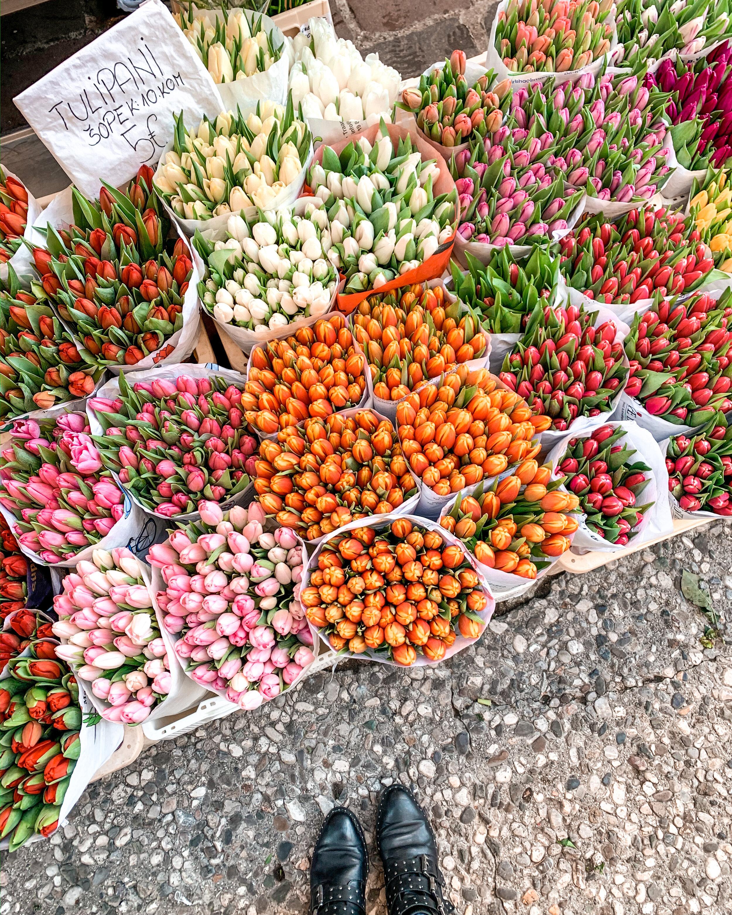 Flower market in Ljubljana, Slovenia