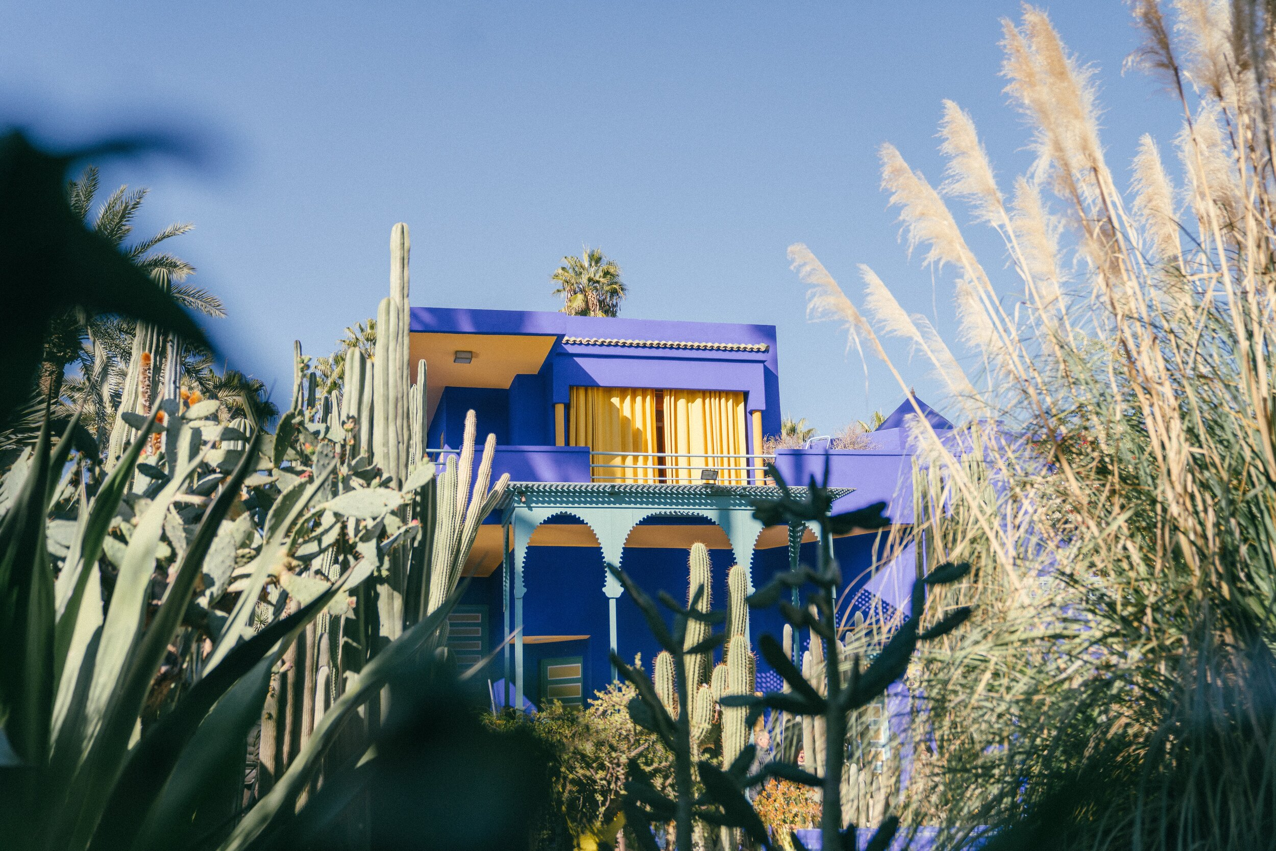 Jardin Majorelle in Marrakech, Morocco - 7 Tips for Taking Photos in Crowded Places