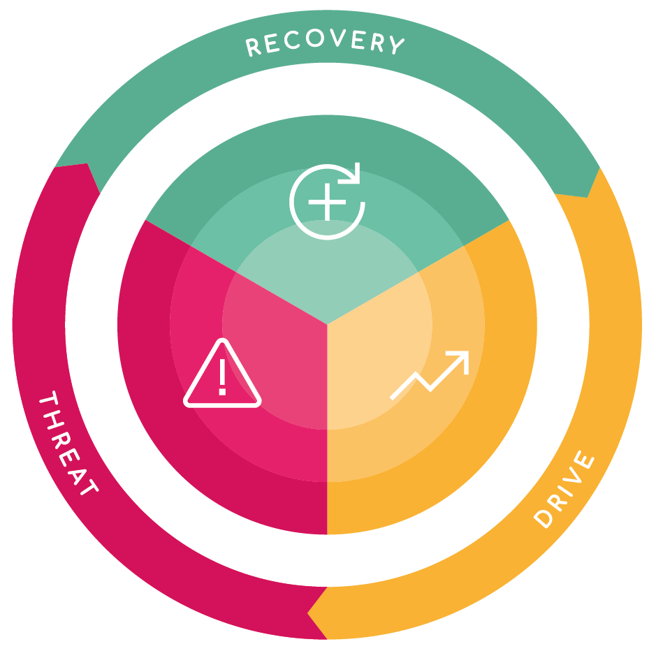 Our methodology is founded in evidence-based psychology; it's memorable, easy to use, and can be applied to individuals, teams and whole organisations.