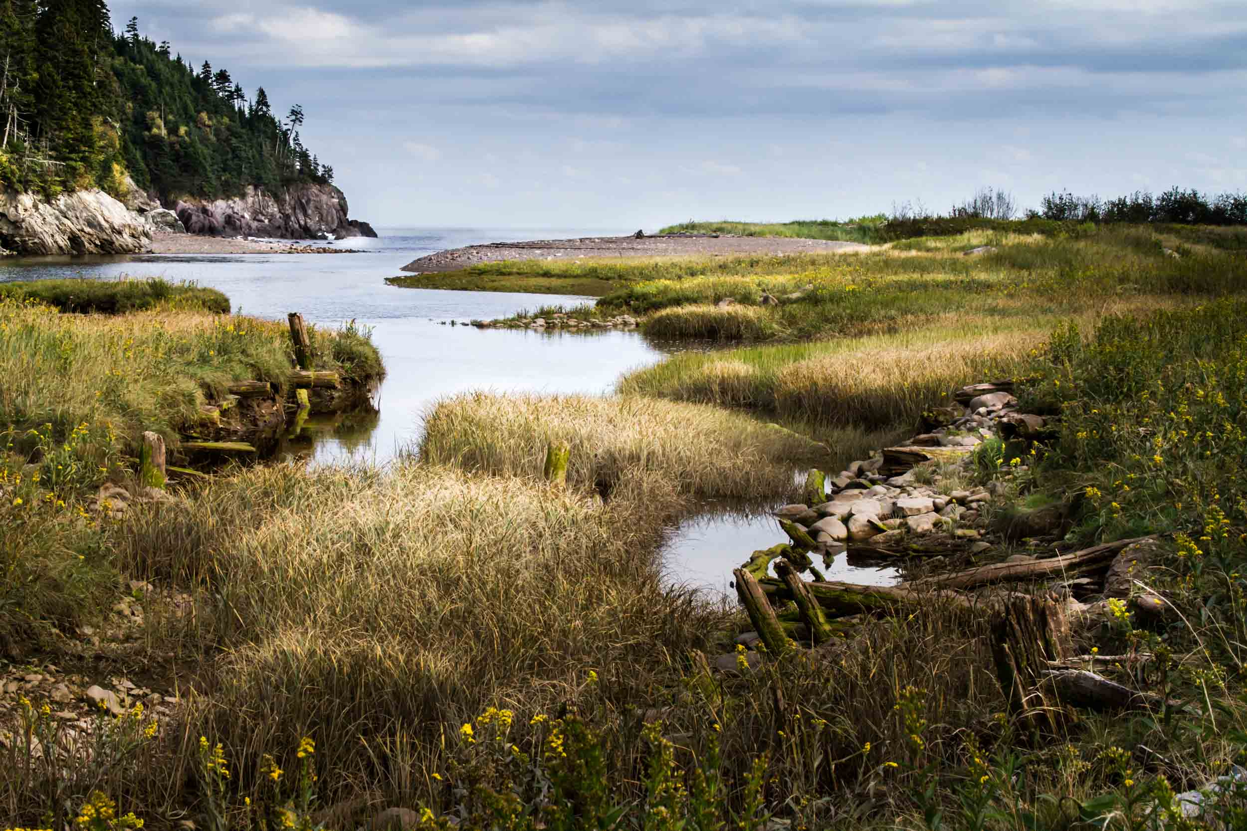Salmon River, Bay of Fundy, New Brunswick  6818