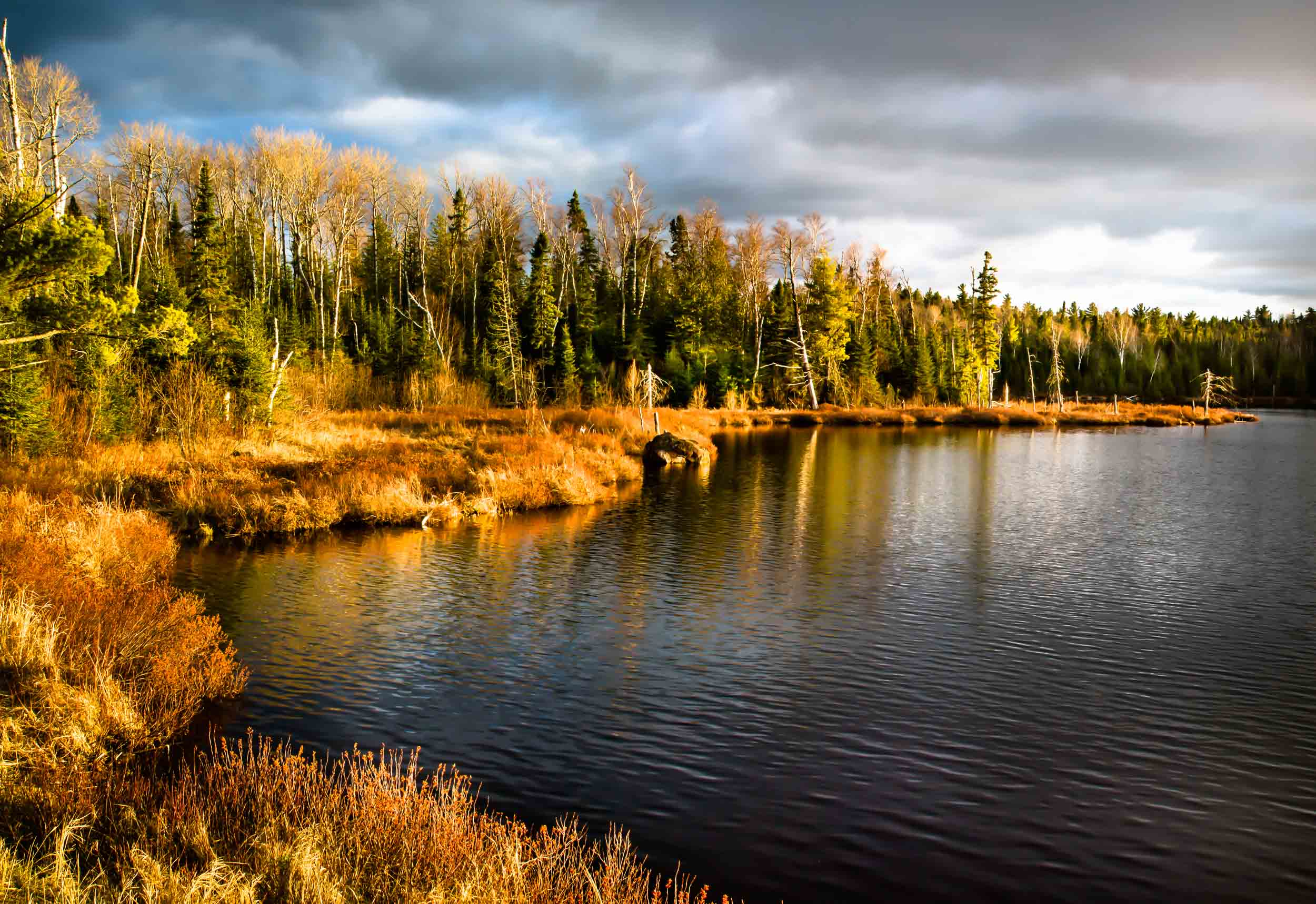 Swamper Lake, Gunflint Trail, MN  8539