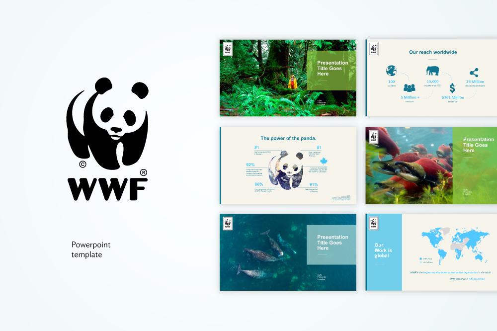 Saragee_Wwf-Presentation.jpg
