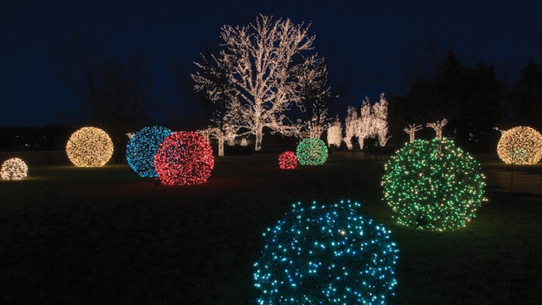 christmas-light-shrubs.jpg