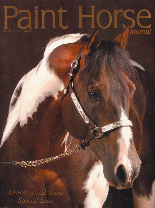 paint-horse-cover-large.jpg
