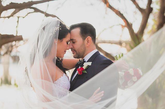 The veil shots get us every time. #swoon . . #weddingvideography #weddingphotography #weddingplanning #weddingring  #austinwedding #texaswedding#dallaswedding#outdoorwedding#bridetobe#bridalparty#weddinginspiration#stylemepretty#newlyweds#justmarried#weddinginspo#weddingdress#goldenhour#bridalstyle#theknot#weddingwire