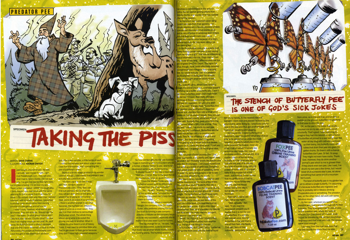"Predator Pee - [Originally published in Bizarre UK magazine.]I bought a bunch of pee. No shit. I actually paid money for pee. I got it at predatorpee.com. They sell piss. And I had to have a bottle. I'm not sure why, I've got it on tap for free right here. Although my pee is boring. I'm so over my pee. Theirs is from predators. GRRR! It's tough piss. I think maybe I was overcome with the same yearning for the unusual that must have overcome those seventeenth century men who filled their ""wonder cabinets"" with all kinds of bizarre nonsense. I assumed a peculiar pride would come over me if I owned a bottle of a dangerous animal's urine.I wasn't sure, however, what kind of piss to get. They sell all kinds of piss. Should I get fox piss? I like foxes. Fantastic li'l fellas. Or what about bobcat pee? They're kinda cute too. Coyote piss? Oh, and they have mighty mountain lion piss! Ah, wolf piss? Ah-ROOOO! Such a difficult decision. And one that I never dreamed I'd be forced to make. Fortunately the people at predatorpee.com thought of this dilemma in advance and offer a pee sampler, a little bottle of each. So I ordered the sampler and about a week later I had five little bottles, each containing the pee of a different predator.Beyond a center stage position in my wonder cabinet, though, I discovered that predator pee actually has a use: hunters use it.""They use it to do two things,"" Ken Johnson, owner of predatorpee.com said to me over the phone. ""One, they use it to lure animals. So for example they would be using something like a deer urine and put it around where they're going to be hunting. Deer would come in to check it out and see if there's another deer in the area or something like that. And then they use different types of urine, say the fox urine or some of the other urines, they use as a cover scent. They actually put it on their clothes to camouflage the human scent. The whole thing about urine is to outwit the animal one way or another. When it comes to the urines there's a lot of history there because it was used by primitive folks because they had to get close to their game because they didn't have high powered weapons or anything.""""How the hell did you get into the pee business anyway?"" I asked.""I was in marketing and I had a client who was a hunter—actually a Maine Master Guide and he had developed some products for hunting—""""Wait,"" I said interrupting him, ""a Master Guide? Is that like a black belt, or something?""""Well yes, they're like a black belt of guides. They're the guys that take the hunters out. In Maine here it's quite a tradition, the guided hunt.""""Does the Master Guide wear like a flannel wizard outfit or anything to differentiate himself from the other hunters?""""No, they're pretty rough, basic guys,"" he said. ""So he had come up with some formulas he was using and he asked me to help him bring them to market.""Which he did. Ken eventually bought the company from the Master Guide, who, as Ken said, preferred playing Rambo in the bush to running a pee company. Which may have been a mistake because the pee company has gone on to be very successful. Especially after Ken realized that piss wasn't just for hunters.""The big change for us,"" he said, ""was when we discovered, quite by accident, that there was another whole market outside the hunting arena. The hunting season in most areas is concentrated in the fall months, but we started getting orders from stores for the fox urine and the coyote urine way outside of the hunting season. And so like good marketers on top of their game, we said, 'What's going on?' We went out and found out our customers were using it to deter animals from their garden, for example. Coyote is a natural predator for deer, so people had discovered that coyote urine could be very effective in keeping deer out of their garden. And then others found that the canine urine, because of a dog's territorial instincts, dogs would mark over the spot that you squirted with urine. So they were using it as a pet training tool.""Indeed the first thing you see at predatorpee.com is a banner that says, ""Trains pets where to go!"" There's a picture of a dopey looking golden retriever puppy saying (which I can't help reading in baby voice), ""Teach me where to go!"" This was an interesting piece of information for me because dogs crap in front of my house all day long. I affectionately call the patch of grass ""Doo Doo Depot."" The signs I've put up, though, have never effectively deterred the neighborhood curs from crapping there. So I actually had a use for my predator pee beyond a curio in my cabinet—more on that in a moment—but its place upon the shelf would not be left vacant because I also bought a bottle of butterfly pee.Yes, butterfly pee. When I was whizzing through the on-line checkout, a window popped up offering me a bottle of butterfly pee. I didn't even know butterflies peed. Does that mean they fart too? I mean that really changes everything doesn't it? It throws a lot of what I learned in childhood into question. Do you unicorns shit? Do rainbows get diseases?""In the wild,"" the site read, ""butterflies find their greatest source of sodium, essential minerals and vitamins from wild animal urine puddles and urine-soaked leaves. Now you can bring this natural butterfly attractant to your garden with Butterfly Pee, pure urine from the wild.""Ewww! What a filthy little animal. They drink pee! I mean, I've drank my own pee before, but that's different. I look like I'd drink my own pee. Butterflies are the nearest Nature has come to creating pure beauty. They're the offspring of angels and rainbows. But they drink pee? Disgusting. I'm not getting one of those dirty little brutes tattooed on my ankle any time soon, I'll tell you that right now. I'm going with the dolphin. That was my original idea anyway.But I ordered a bottle anyway. The 12-ounce jumbo size bottle. It's butterfly pee, right? How bad could it be? Probably smells like flowers and tastes like champagne. I convinced myself that I was ordering a bottle of Ambrosia. Delightful. I even entertained the idea of splashing some of it under my arms and going to a bar to see if chicks were attracted to the scent.The day it came, I stood in my kitchen and read the directions on the back of the bottle, ""Pour a shallow pool of Butterfly Pee into a colorful dish and place on the ground, stump, or fencepost in a place that gets a lot of direct sunlight. The butterflies will find it quite soon. Replenish as needed."" Fair enough. So I opened the bottle and poured some of the pee into a little bowl. It looked like human pee, golden and amber, if not a little more concentrated. Then all of a sudden my nostrils were filled with the most noxious, pungent, foul aroma I had ever smelt. ""Holy shit!"" I said. And because I was still under the impression that butterfly pee was going to smell like the Nectar of the Gods it took me a second to realize that it was the source.""WHAT THE FUCK IS THAT SMELL?"" Tania, my wife, yelled from another room. The stuff was filling the house.""IT'S FUCKING BUTTERFLY PEE!"" I yelled as I ran out the front door with the bowl of liquid filth in my hands.At the nearest patch of sunlight, I bent over and placed the bowl on the ground and, while doing so, I practically put my face in the piss and thus got another huge whiff of it. I stood up coughing and gagging, my eyes watering.""Are you okay?"" Tania asked.""No,"" I whined. I wasn't physically hurt, but I was mentally scarred. How could the Creator suffer such a blasphemy upon His earth? What kind of cruel joke is He playing upon us when the most beautiful, wonderful creatures in the world produce the foulest, most vile smell in all of Nature? Ugh, it's so gross. It smells like ammonia and horse shit. Lots and lots of ammonia and lots of horseshit. And maybe a dash of human dung. Actually, it's the other way around: it smells like a lot of ammonia and a lot of human dung with just a dash of horseshit. And a dead baby in a Dumpster full of hot trash. Just horrible. It was so bad that Tania and I had to leave the house for the day. Not only was the house consumed by the odor, but so was the whole front yard.Naturally, I had to ask Ken, ""What the hell?""""Well, actually,"" Ken said, ""if you read the description a little further, you'll realize that it is not the pee of butterflies. It is actually wild animal urine. And for butterflies in the wild that is one of their favorite foods. They get many of the nutrients, particularly minerals, from urine, so in the wild if an animal pees a puddle on the ground, butterflies will gravitate to that area to get the nutrients.""Okay, so the pee in the bottle that nearly knocked me on my ass didn't come out of a butterfly. That's good. I was beginning to imagine they had this laboratory with a bunch of butterflies all pinned to a wall being force fed water all day long with teeny, tiny li'l catheters rammed up their teeny, tiny li'l butterfly cocks with tubes that drain their pee into giant 55 gallon drums. So there's still a chance butterflies don't pee. Or fart. Or poop. Hell, they might not even have cocks. Thank God. However, they do drink another animal's pee, which to me is grosser than if they drank their own pee. Like I said, I've drank my own pee a few times, but I would never drink someone else's pee, let alone something that came out of a mountain lion's cock. Disgusting li'l beasts. Flying filth.The bowl of butterfly pee in my garden has yet to attract a single butterfly. That I've seen anyway. I'm assuming it's because they're migratory and they're probably still in Mexico drinking Chupacabra piss or something. The predator pee, on the other hand, did work with fabulous results.As Ken said, wherever you sprinkle the predator pee, that's where the dogs will do their business. They're programmed to piss on piss. Vis a vis. So the question was, where did I want to relocate Doo Doo Depot to? I mean, really, I'd just be transferring the problem to a fellow neighbor and that's not very nice. The answer came soon enough.One day, quite out of the blue, I received information from a neighbor that the lady across the street from us was conspiring to have us evicted from our apartment. Apparently she was upset with all the ""partying"" and had drawn up a petition of sorts and presented it to my landlady requesting that I be evicted. I had lived in that apartment for five years and never seen this woman once, let alone knew that she considered me a nuisance. I do entertain on occasion, but it's not a bacchanalia over here. The whistle blower neighbor told me not to worry about it. He said the author of the petition was a certified nutcase and my landlady had defended me and refused to evict. That was good news, and I didn't worry about it, but still it's a very odd feeling to learn that a complete stranger is waging a secret war against you. ""Well,"" I thought, ""if it's war she wants, war she gets.""""Does anyone use it for pranks or revenge?"" I asked Ken.""That's quite a common use,"" he said. ""They always ask, 'What's the smelliest one you got?' This particular individual had had a dispute with his attorney and apparently his attorney was going to be getting a bottle… perhaps not fully closed. We've had numerous people having problems with their neighbors and wanting to deal with that. Other people, particularly in rural communities, there will be one spot downtown, like a Dunkin' Donuts or some shop where the kids hang out at night. Well that was another use: someone wanted one of the urines to sprinkle around the area where the kids tend to congregate to kind of encourage them to congregate somewhere else. There are a lot of uses.""I went with the coyote piss first. I marched across the street and picked a spot in the corner of the petition lady's front yard where it met the sidewalk and unloaded the contents of the bottle. I walked back to my side of the street and sat down on our porch to watch. Sure enough, within minutes a woman walking her dog was halted mid-stride as the leash went taut. She turned around to find her dog sniffing the hell out of the spot I had sprayed with the coyote pee. The dog finally lifted its leg, took a long squirt and they were off.I clapped my hands and squealed with glee.For the rest of the afternoon it seemed that every time I looked out the window a dog was pissing on her lawn and all over her flowers. ""It works!"" A couple days later, right in the middle of the sidewalk and next to the coyote piss spot, I saw the biggest pile of dog crap I have ever seen in my life. I'm not kidding. It was beyond poop. Poop, or crap, can be kind of cute, but this was just a big, black pile of excrement. Utterly revolting. No one would clean it up. It sat there for hours. Unbelievably, later that day I noticed that some poor soul actually stepped in it. ""How could you not see that thing?"" I wondered. I mean I could see it from across the street. It was like a mountain. It cast a shadow. And judging by the smear, whoever stepped in it slid about 12 inches. I felt kind of bad, but then I envisioned the crazy woman herself stepping in the pile and I felt better. Ah, revenge.""Where do you get all the pee from?"" I asked. I wanted to make sure the supply wasn't going to be running out.""We get it from various places,"" he said. ""From farms, game farms, zoos, various places where there are animals in captivity. It's collected in a non-intrusive way. You know, they pee in their cages, and it's collected in floor drains, and it's filtered and bottled, so it's not anything that harms the animal in any way. And it's a renewable resource, and animals tend to pee a lot.""""Sure, sure,"" I said. ""Let me ask you, though: how much money is in the pee business?"" I got a cat that pees a lot.""Well, it's enough to put several children through college.""""Really?"" I said. I wonder if there's any money in crap? ""So what do you tell people you do?""""I'm in the pee business,"" he said flatly. ""Having raised three daughters, it's usually more difficult when they're asked the question what their dad does, especially in some formal setting like when you're taking them around to visit colleges. They want to crawl under the table.""They wouldn't be crawling around under the table if you sprayed some fox piss down there."