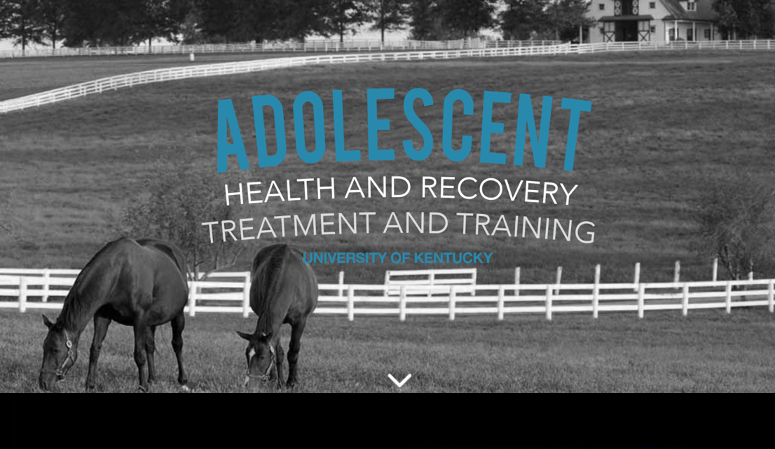 Jin Shin Jyutsu treatment and Self-Help training for youth at risk for substance use disorder, their therapists and peer-support available in 2017 and 2019 through grant funding.