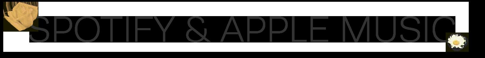 Spot&App.png