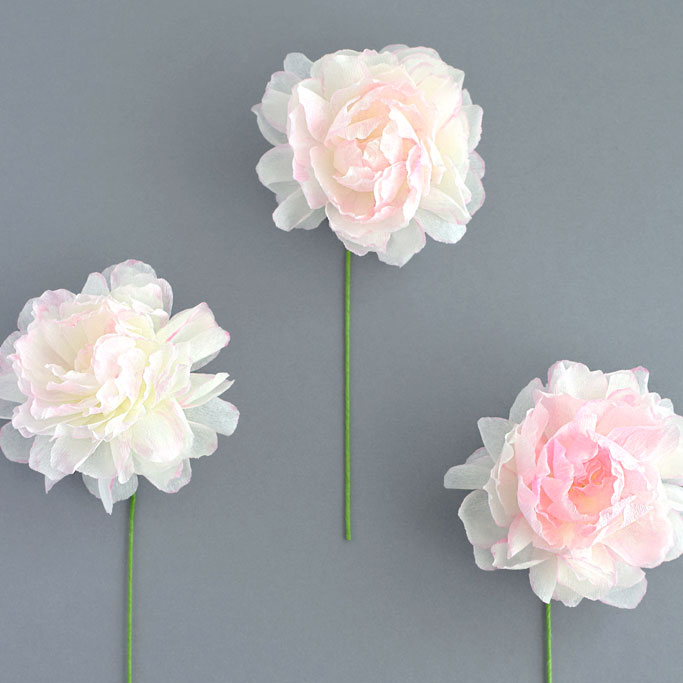 DIY-Dip-Dye-Color-Paper-with-3-peony-examples-feature-image-DIY-paperflowers-paper.jpg