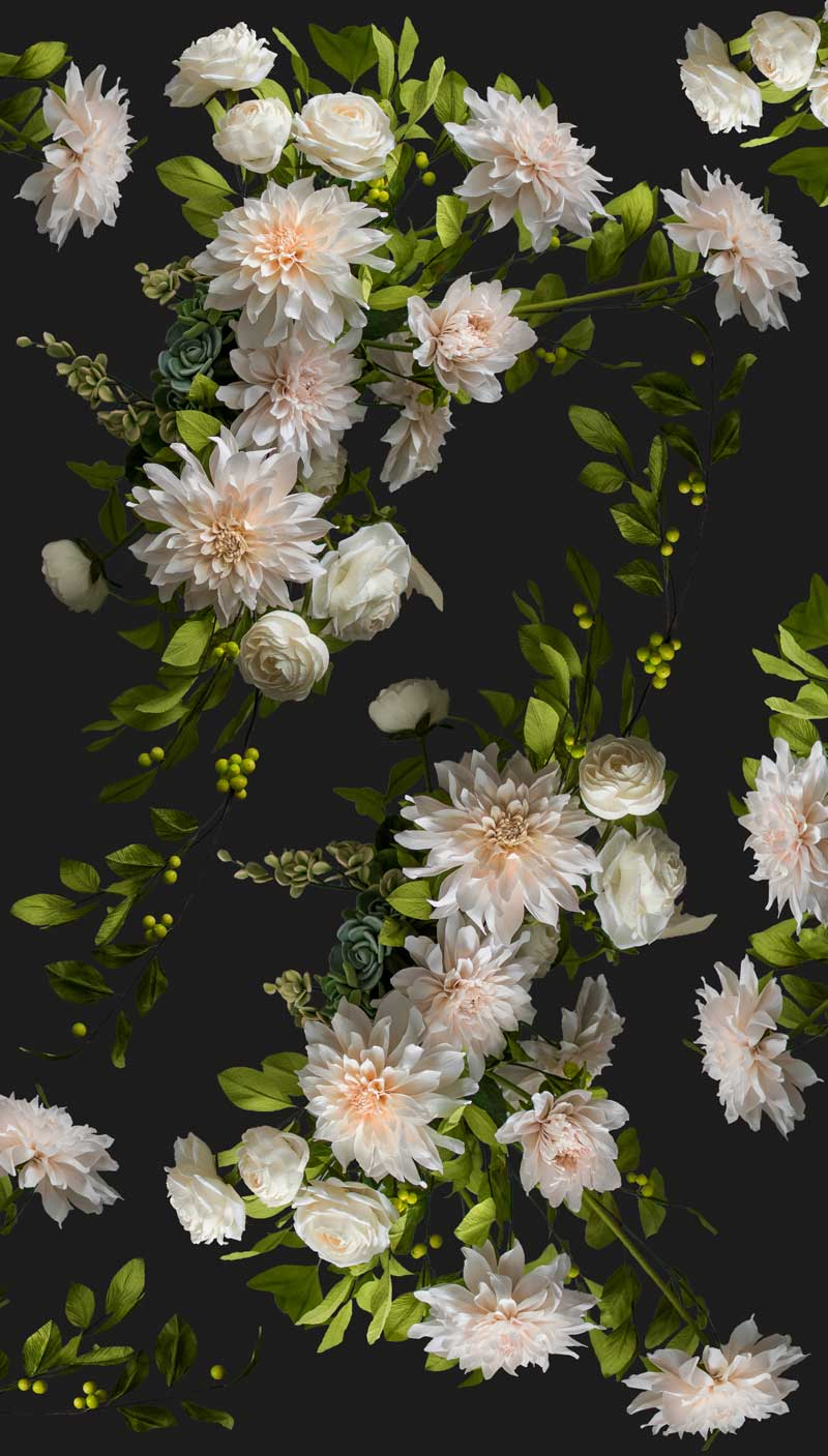 Dahlia-Roses-Gift-Wrap-Black-w-faded-edges-Instagram.jpg