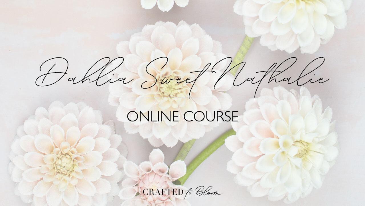 Online-Courses---Video-Thumbnail-Online-Course.jpg