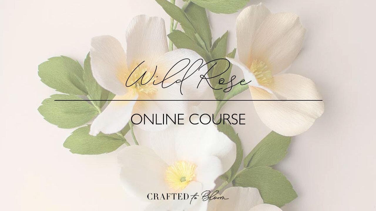 Wild-Rose---Thumbnail-for-Password-email.jpg