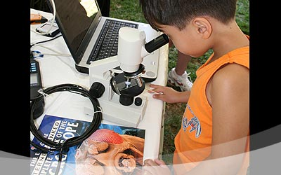 A keiki looks through the lens of a digital microscope and examines some interesting water creatures.