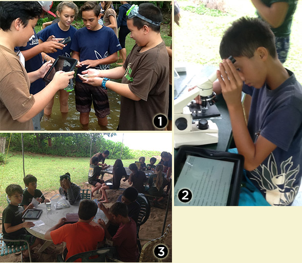 1) Kanuikapono students catch a fish and trying to determine what kind it is. 2) A Kanuikapono student setting up his microscope to view his plant sample. 3) Students from Kanuikapono doing some water testing at Waipā.