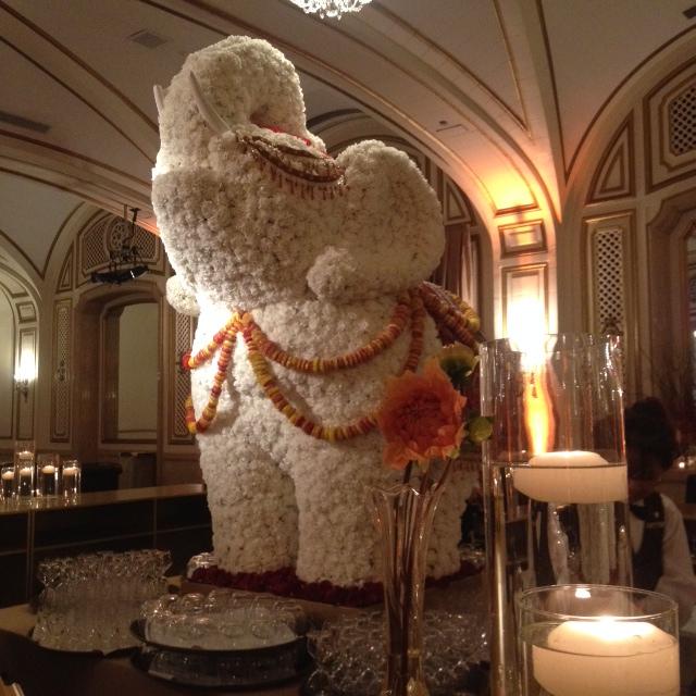 Topiary Flower Elephant 2.JPG