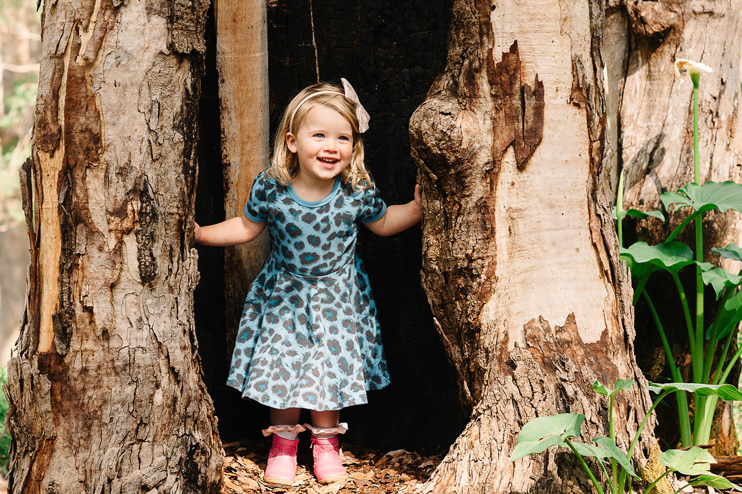 Girl poking cheekily out of a tree in the forest