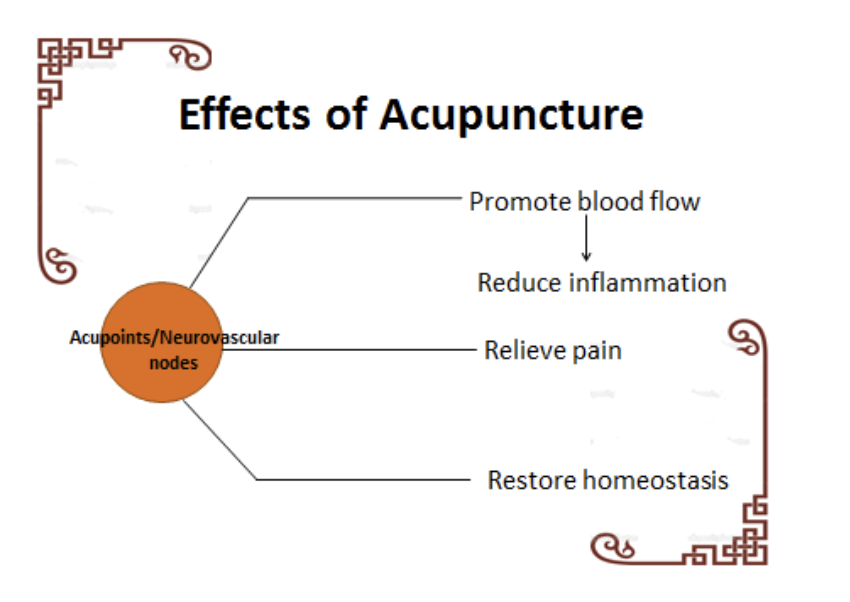 effects-of-acupunture.png