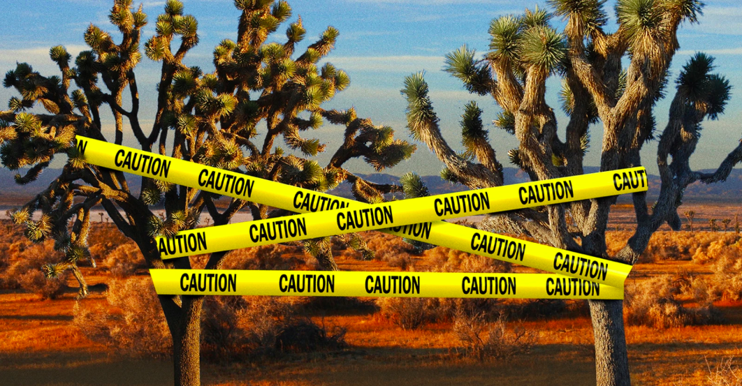 Murder in the Mojave: Homicides and Body Dumps in the California Desert