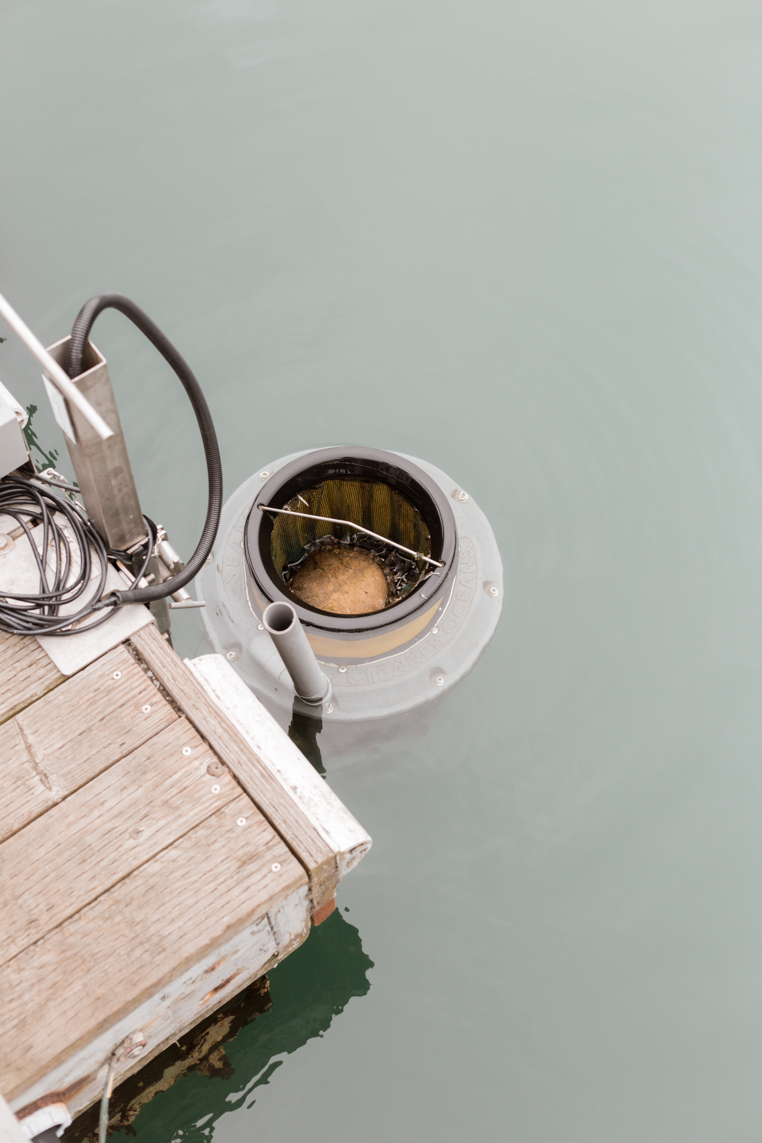 Sea Hugger's SeaBin cleans our marina waters