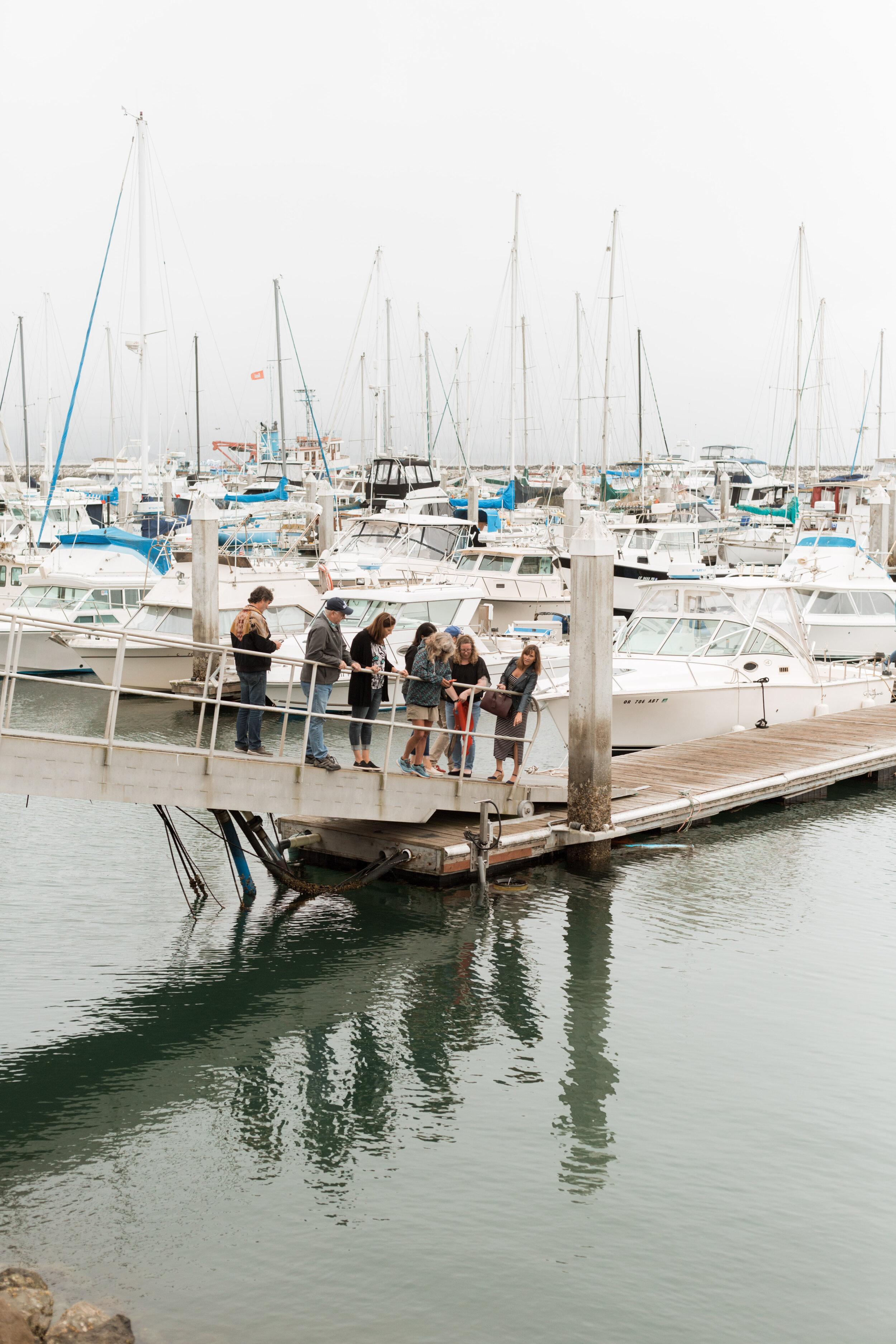 Sea Hugger's SeaBin cleans our marina waters in Half Moon Bay, CA harbor.
