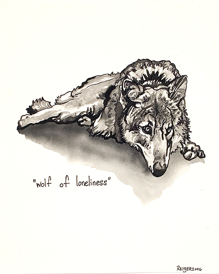 Canis lupus  (dog wolf)  Sumi ink on paper 9 x 7 1/2 inches 2006