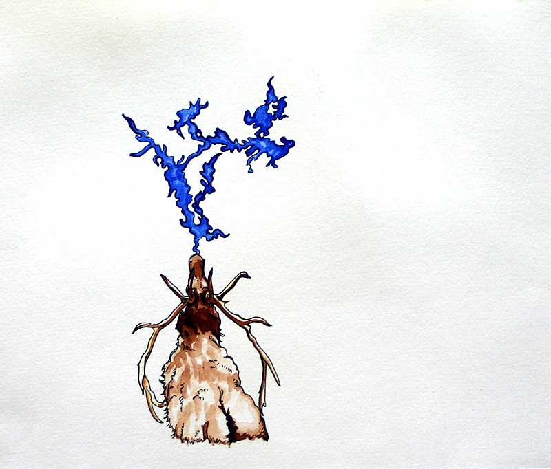 elk with pneuma  Pen and ink and watercolor on paper 7 3/4 x 9 1/4 inches 2007