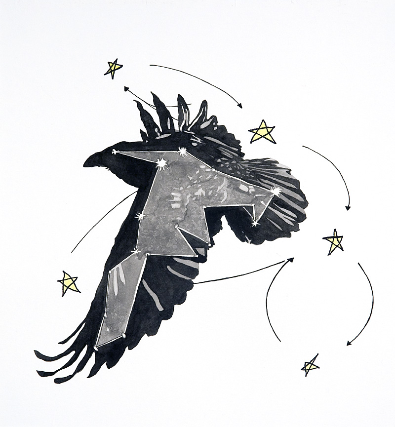 constellation (raven)  Pen, sumi ink, gouache, and watercolor on paper 11 3/4 x 10 3/4 inches 2009