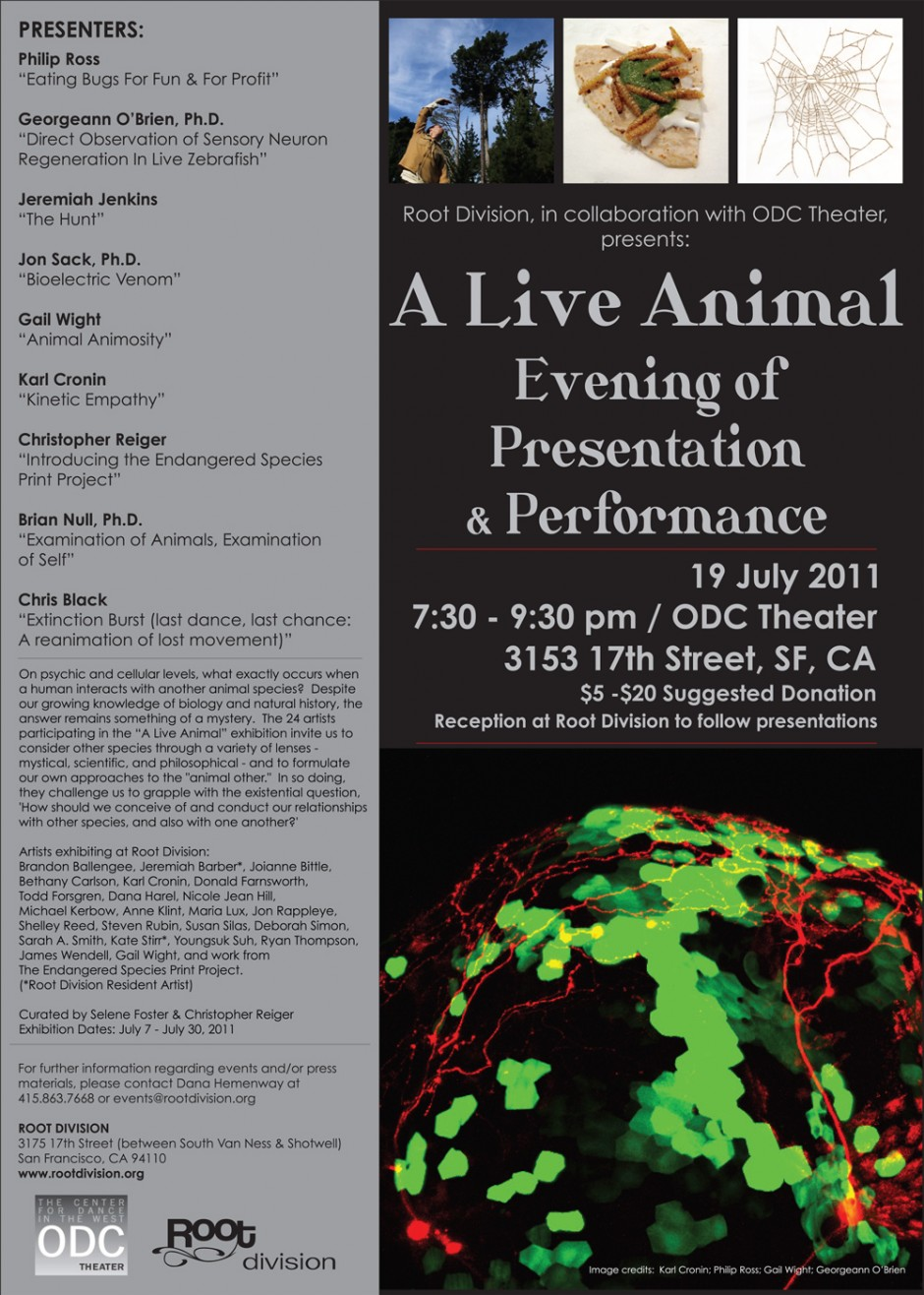 """Poster for """"BAASICS.1: A Live Animal"""" (2011)."""